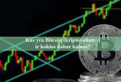 Kas yra Bitcoin kriptovaliutos ir kokios dabar kainos